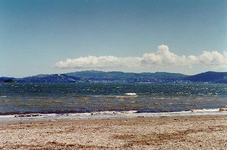 Petone beach