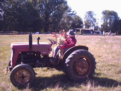 Scarecrow on tractor