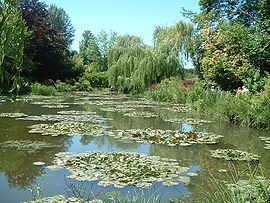 Water Garden at Giverny