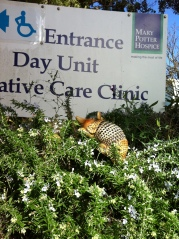 Andy arriving at the Hospice