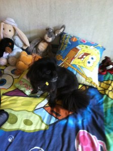 Lotte resting