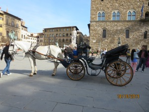 A popular mode of transport for touristsouri