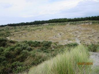 Deserted landscape