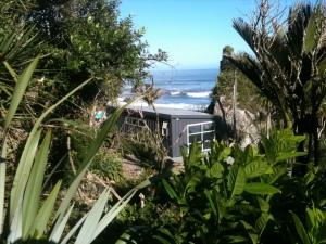 Kiwi bach