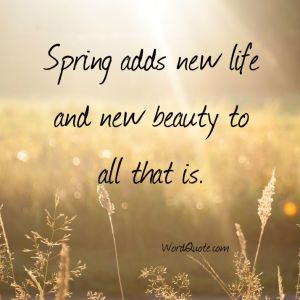 Image result for images for spring adds new life