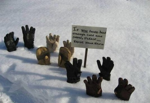 hands in snow